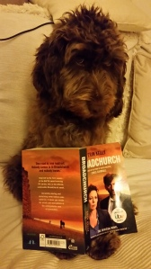 Lexi particularly enjoyed Erin's prose in the Broadchurch novel.